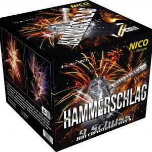 Nico Hammerschlag