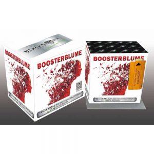 boosterblume blackboxx